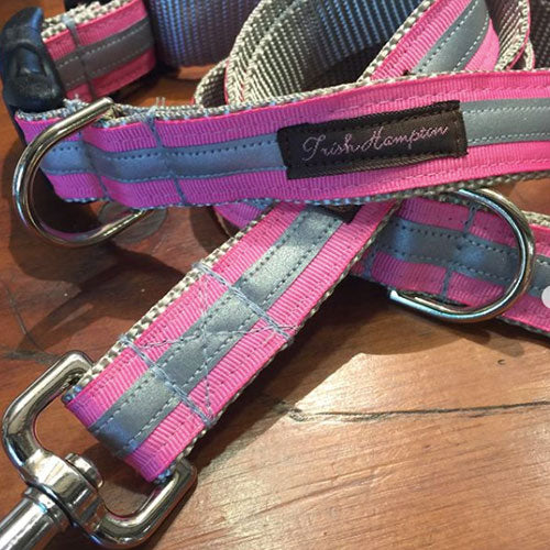 Durable and stylish dog collars