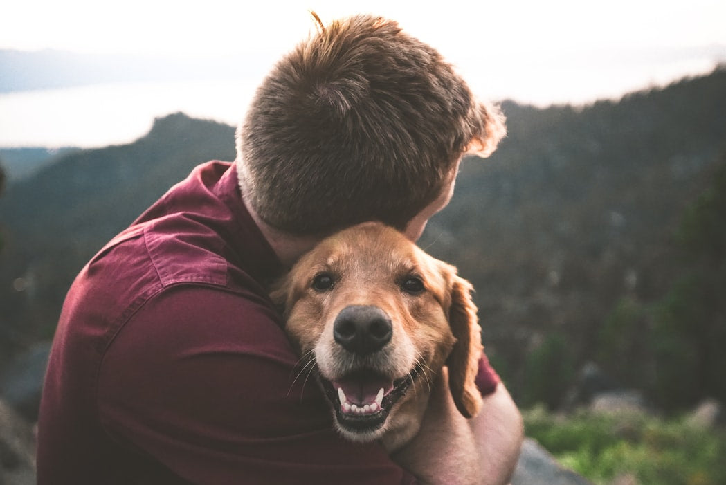 dog-with-male-owner-hugging-plant-based