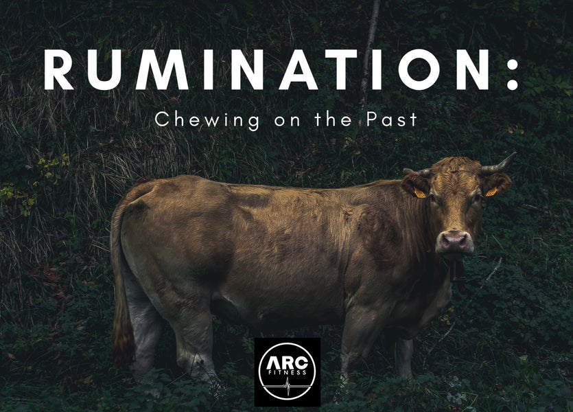 RUMINATION: Chewing on the Past.