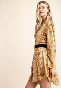 All Into Fall Python Print Dress