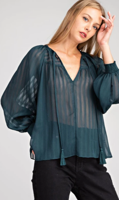 Glam Sheer Tie Front Top
