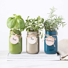 Load image into Gallery viewer, Mason Jar Garden Grow Your Own Herbs Gift Set