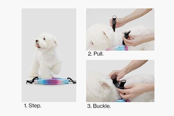pidan - Pet Harness for Dog