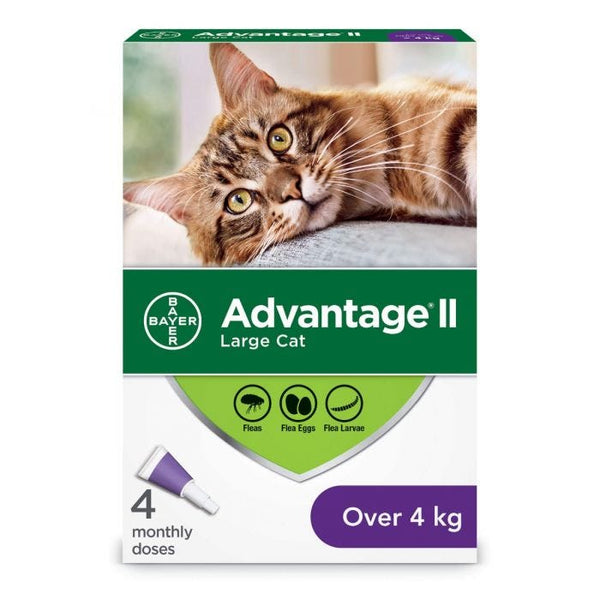 Bayer - Advantage II - Topical Flea Treatment for Cats (For Cats Over 4kg)