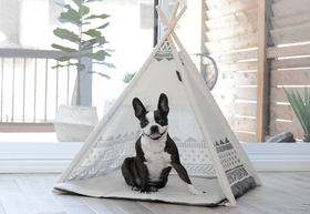 BeOneBreed - Dog Tent