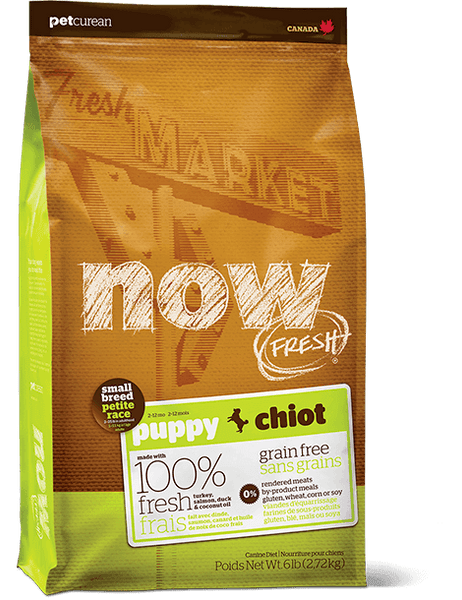 NOW FRESH - Grain Free Small Breed Puppy Recipe