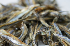 Only One Treats - Dried Sardines