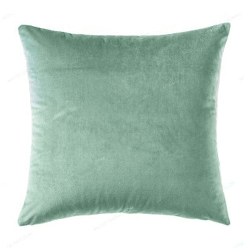 Velvet Throw Pillow