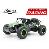 Rugged Offroad RC Car