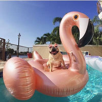 Large Rose Gold Pool Flamingo