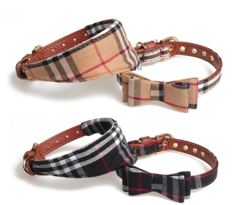 BB Luxury Dog Collar