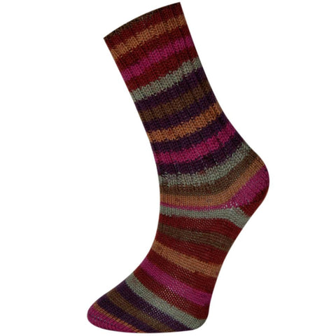 Fiddlesticks Sock Yarn 140-04