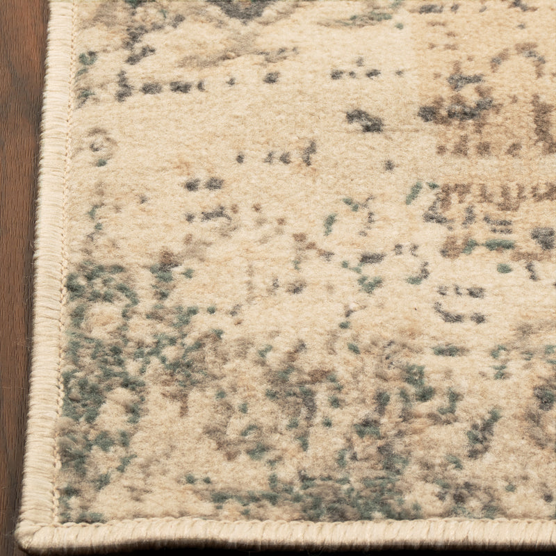 Amaris Vintage Distressed Medallion Rug