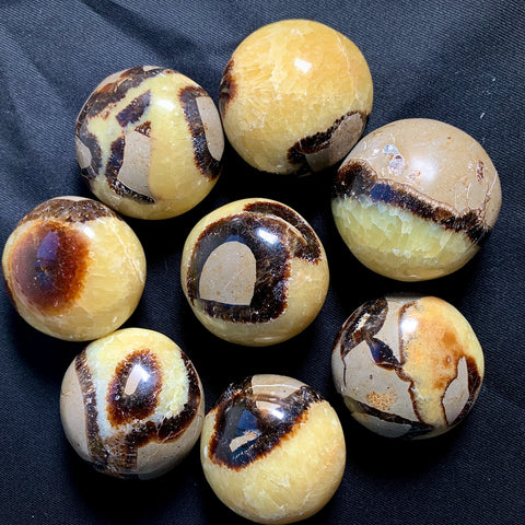 real septarian egg for sale