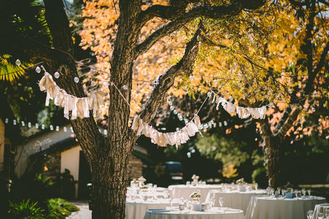 Trees, wedding, table, summer, golden light