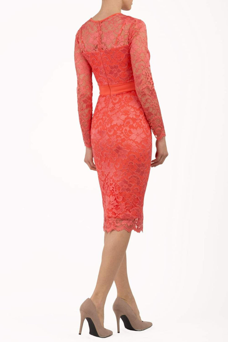 Model wearing the Diva Cherrie Lace Pencil dress with long sleeves and round neck in hot coral back image