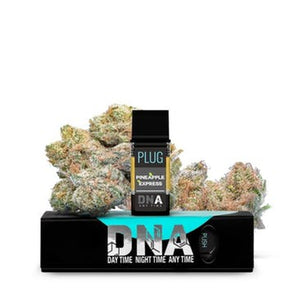 PLUG N PLAY - DNA PINEAPPLE EXPRESSS - 1G