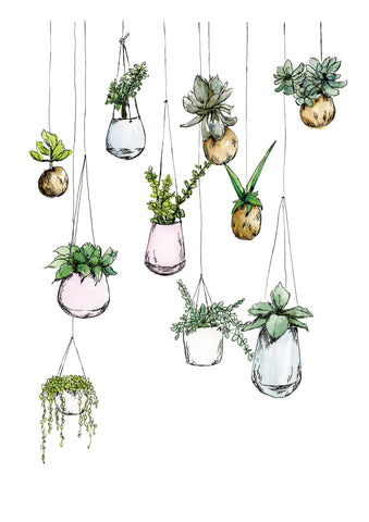 Watercolour art print of hanging plants, by For My dearest