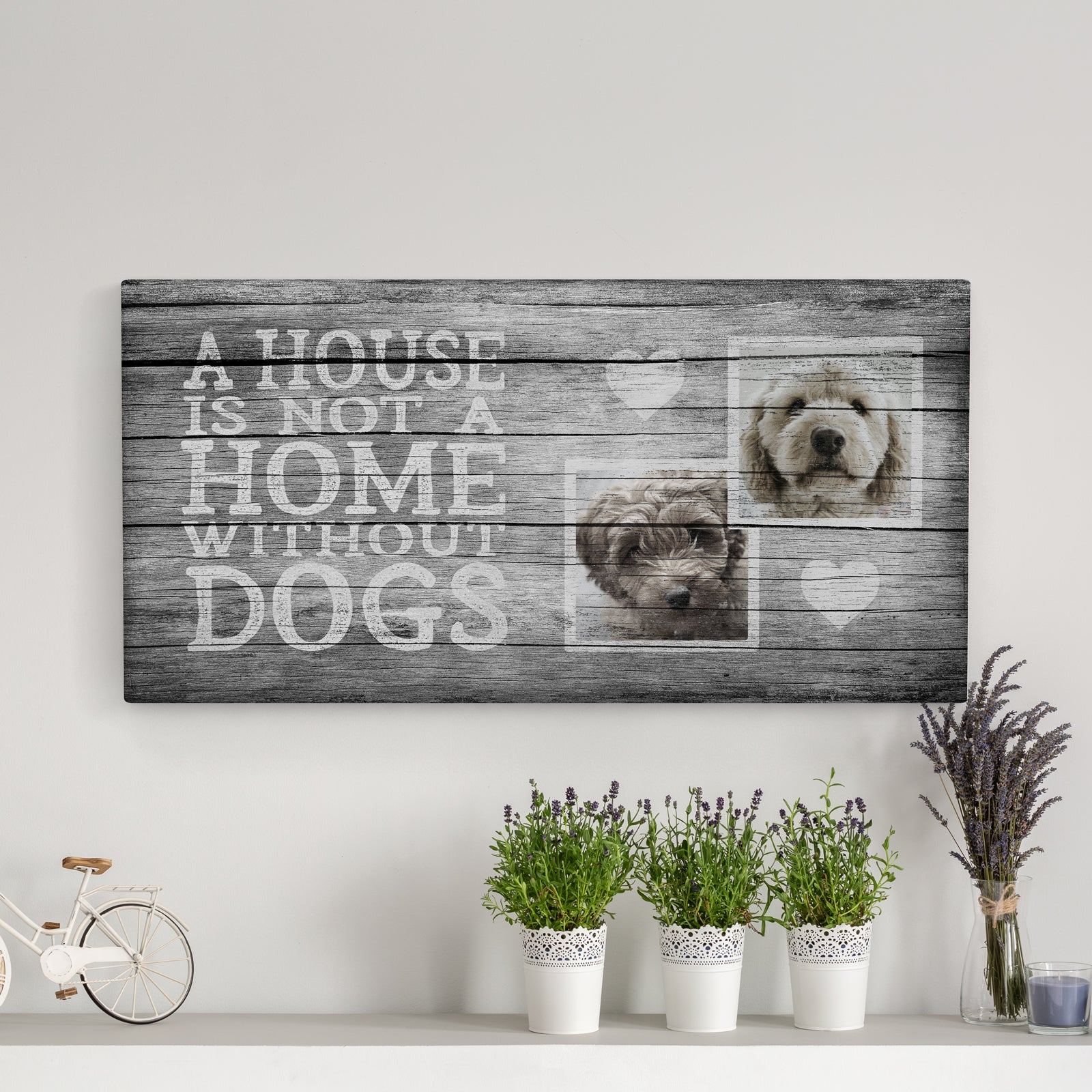 A House is Not a Home, Grey (2 dogs)