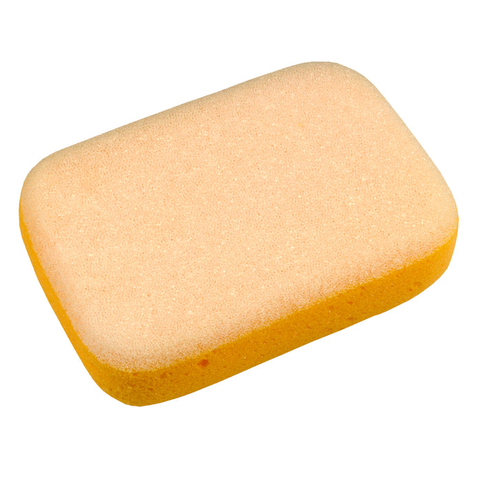 Dual Purpose Sponge - GCS312