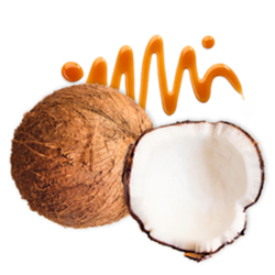 Raw Coconut Nectar