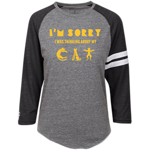 Cat Shirts For Guys Holloway Heathered Vintage T-Shirt