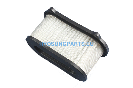 Hyosung Air Filter Gd250N - Free Shipping Hyosung Parts Eu