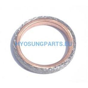 Hyosung Exhaust Pipe Header Gasket Gt125 Gt125R Gt250 Gt250R Rx125Sm Rt125D Gd250N Ms3-125 Ms3-250 Gv125 Gv250 - Free Shipping Hyosung Parts