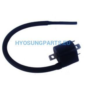 Hyosung Front Ignition Coil Carb Gt650 Gt650R Gv650 - Free Shipping Hyosung Parts Eu