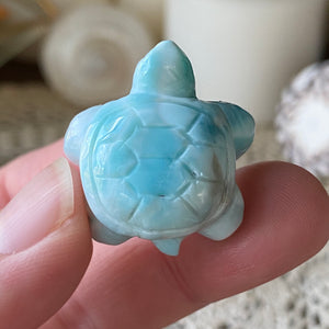 Azure Waters Larimar Turtle
