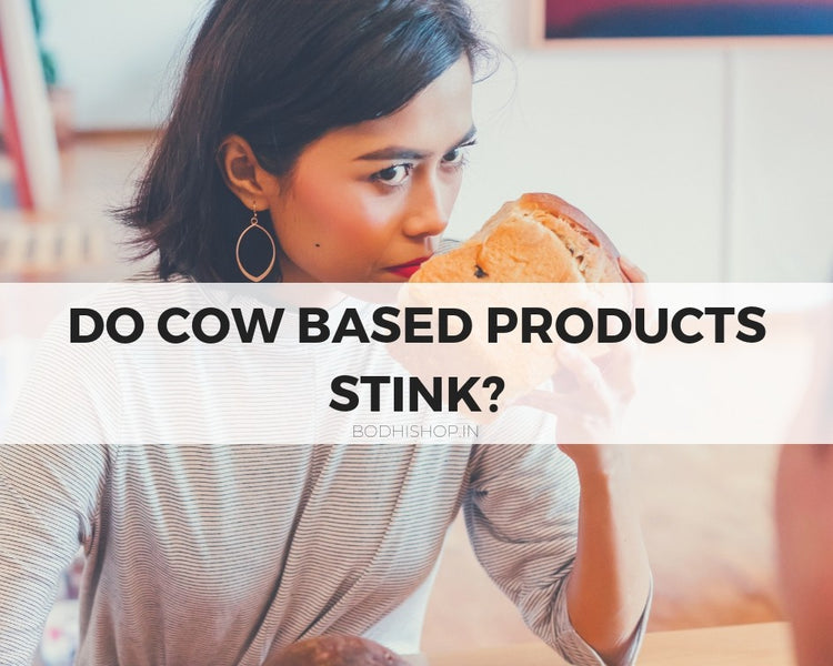 Do Cow dung and Cow urine based products stink?