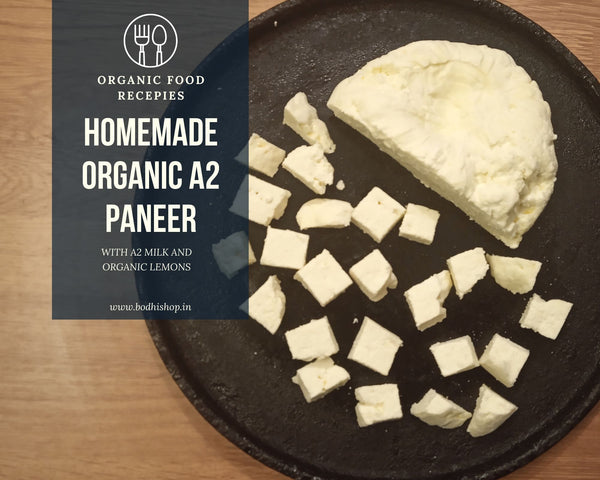Homemade Organic A2 Paneer Recipe