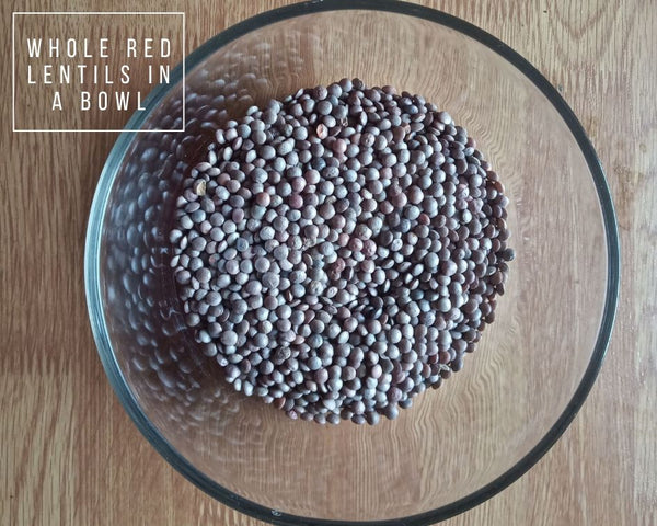 Sprouted Masoor Dal - Step 1