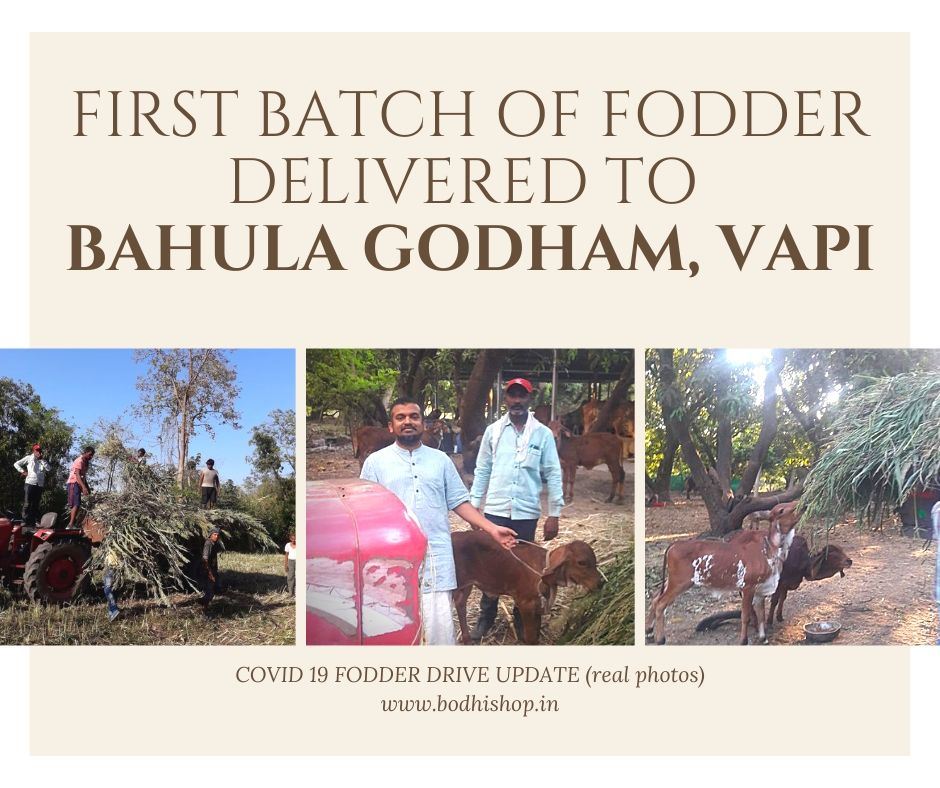 Covid 19 Fodder Drive - First Batch Delivery