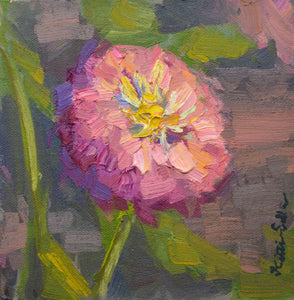 """Pink Zinnia"" 6x6 framed Original Oil Painting by Artist Kristina Sellers"