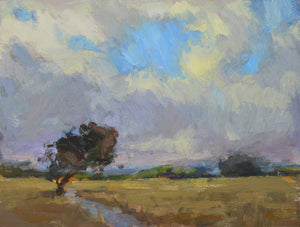 """Sauvie Skies"" 9x12 Original Oil Painting by Artist Kristina Sellers"
