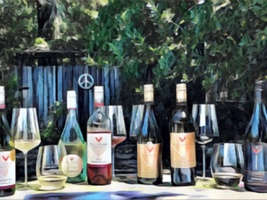 Auckland Gourmet Food and Wine One Day Tour