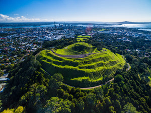 Auckland One Day Tour