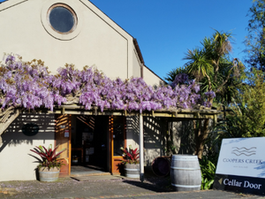 West Auckland Winery and Black Sand Day Tour