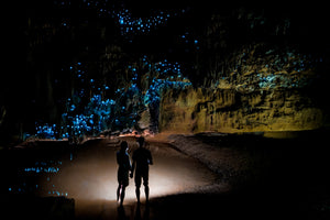 Waitomo Glowworm Caves Day Tour