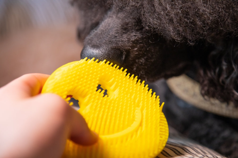 Scrubby's Guide to Deshedding Pets and Your Clothes Too
