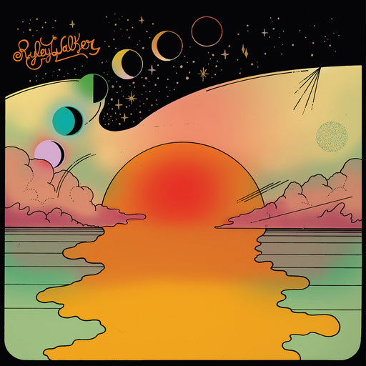Ryley Walker: Golden Sings That Have Been Sung (Vinyl LP) | Optic Music | Vinyl Records | Dublin Vinyl