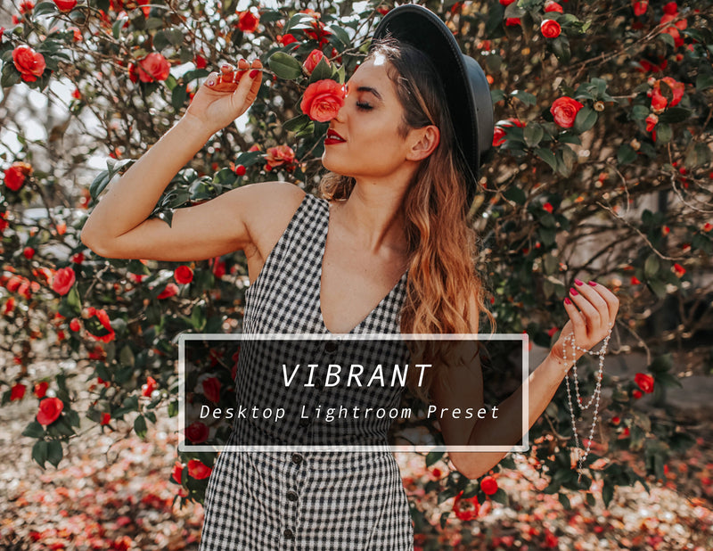 VIBRANT Desktop Lightroom Preset