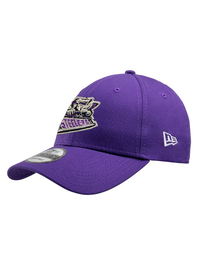 Steelers New Era Purple Cap