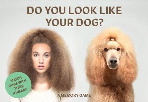 Do You Look Like Your Dog? A Memory Game