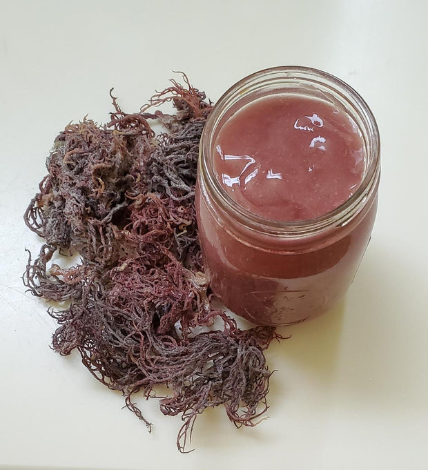 Wildcrafted Sea Moss Gel