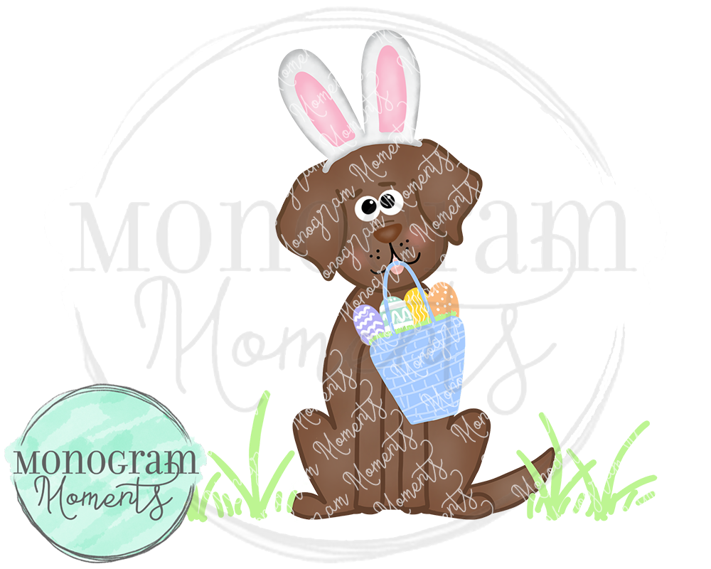 Boy's Easter Brown Lab