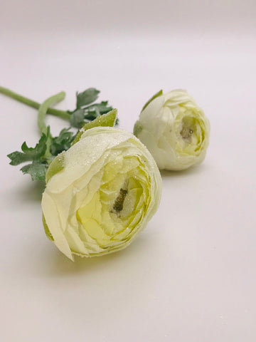 "Ranunculus Stem 20"" - White"