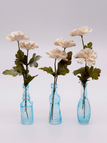 Aster in Glass Vase, Set of 3 - Cream