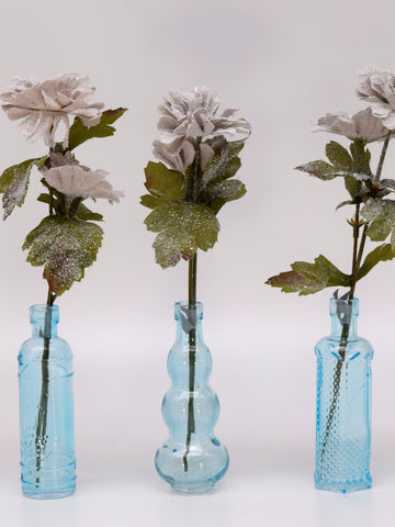 Aster in Glass Vase, Set of 3 - Dove